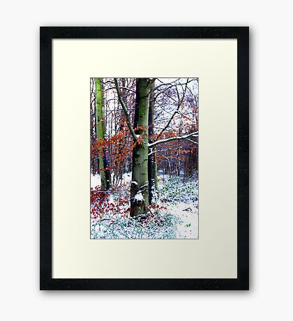 Winters Leaves Framed Print