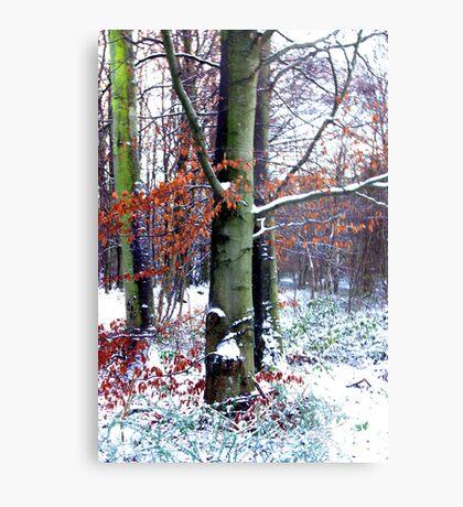 Winters Leaves Metal Print