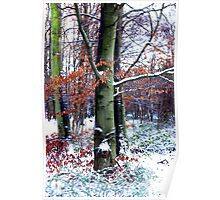 Winters Leaves Poster