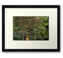 A Beautiful Blur Framed Print