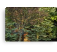 A Beautiful Blur Canvas Print