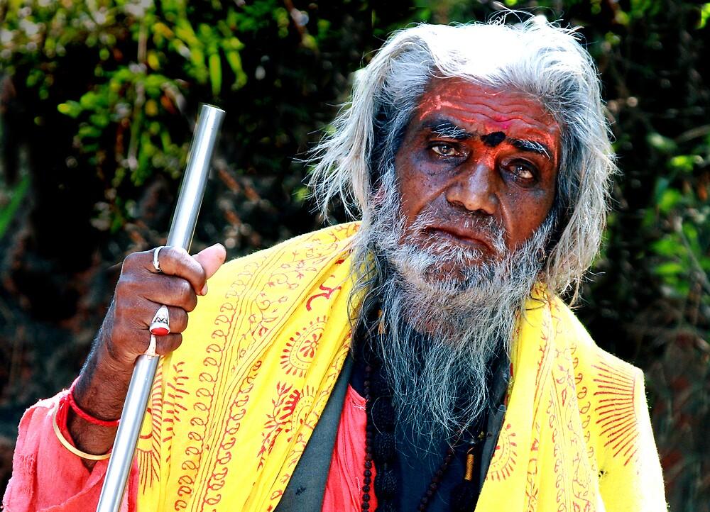 The Sadhu by amulya