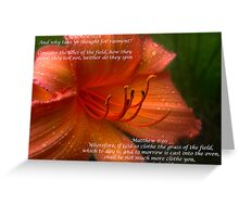 Matthew 6:28 Greeting Card