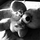 """Teddy with Kitty by """" RiSH """""""