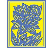 Eskridge Flowers Yellow Blue Photographic Print