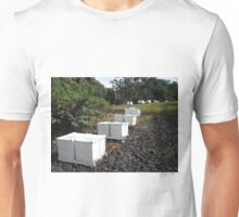 "A page from my book ""What do honeybees do?"" Ten frames hives in a bee yard or ""Apiary"" Unisex T-Shirt"