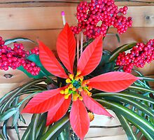 Poinsettia,Berries and Foliage by MaeBelle