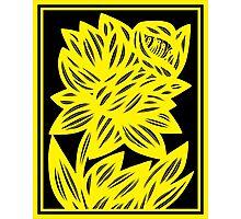 Gertel Daffodil Flowers Yellow Black Photographic Print