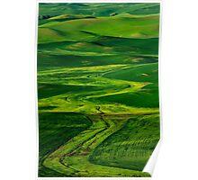Ribbons of Green Poster