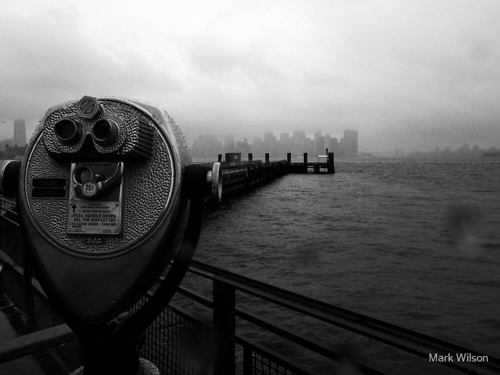 Watching Manhattan by Mark Wilson