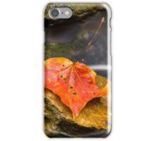 Autumn Leaf in Stream iPhone Case/Skin