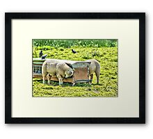Can You Hear Me Mother Framed Print