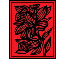 Brien Daffodil Flowers Red Black Photographic Print