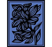 Calder Daffodil Flowers Blue Black Photographic Print