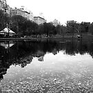 Conservatory Water, Central Park by Mark Wilson