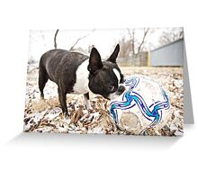 Quorra and the Snow Soccer Ball Greeting Card