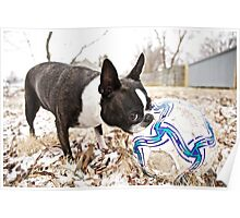 Quorra and the Snow Soccer Ball Poster