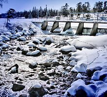 Reed Falls - Whiteshell River, Manitoba by Vickie Emms