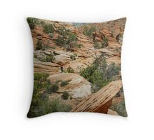 Zion Balanced Rock Throw Pillow
