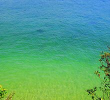 Colourful Water by Of Land & Ocean - Samantha Goode