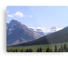 Grasslands and Glaciers Metal Print