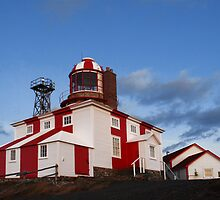 Cape Bonavista Lighthouse by Brian Carey