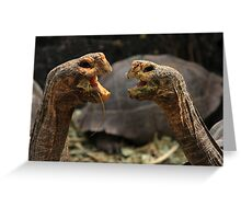 Dueling Tortugas  Greeting Card