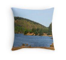 Luscious Loch Throw Pillow
