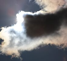 Cloud Bar by Laurie Puglia