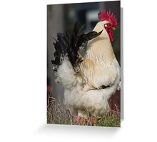 rooster in the farm Greeting Card
