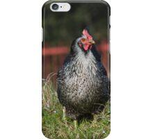 hen in the farm iPhone Case/Skin