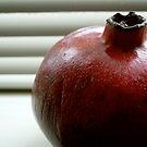 Pomegranate II by geikomaiko