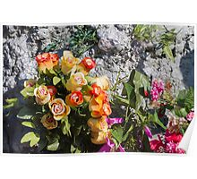 roses decoration Poster