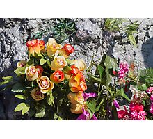 roses decoration Photographic Print