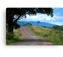 The Road in My Dreams Canvas Print