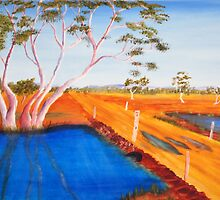 Murchison River crossing Millimilli station by robert murray