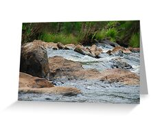 Boulder Cascades - Manning River NSW Greeting Card