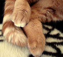Tigger Feets by down23