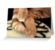 Tigger Feets Greeting Card