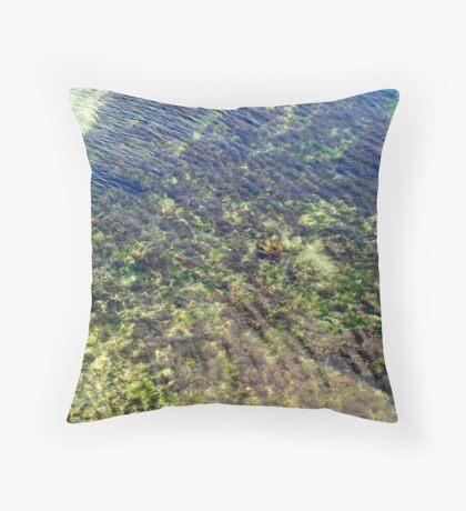 Sea World Throw Pillow