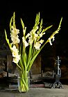 Gladioli in Fireplace by secondcherry