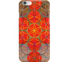 13 Spheres iPhone Case/Skin