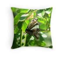 Tailed Emporer Throw Pillow