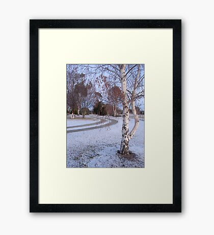 my front yard Framed Print