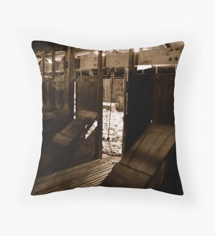 Down the chute Throw Pillow
