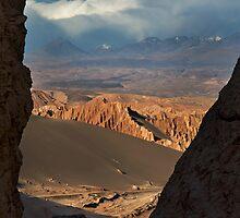 Alien Landscape by Krys Bailey