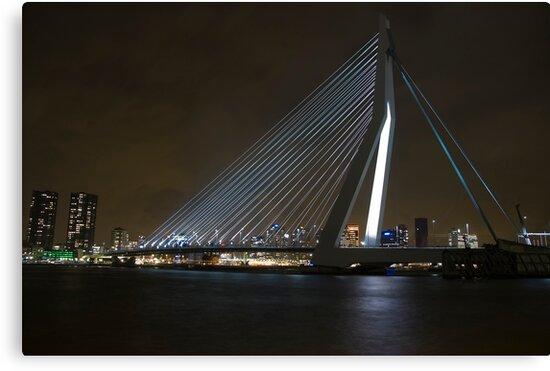 Erasmus Bridge by Brendan Schoon