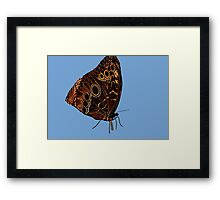 Erfly..working 9-5 Framed Print