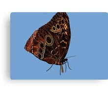 Erfly..working 9-5 Canvas Print