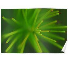 Green Poles Poster